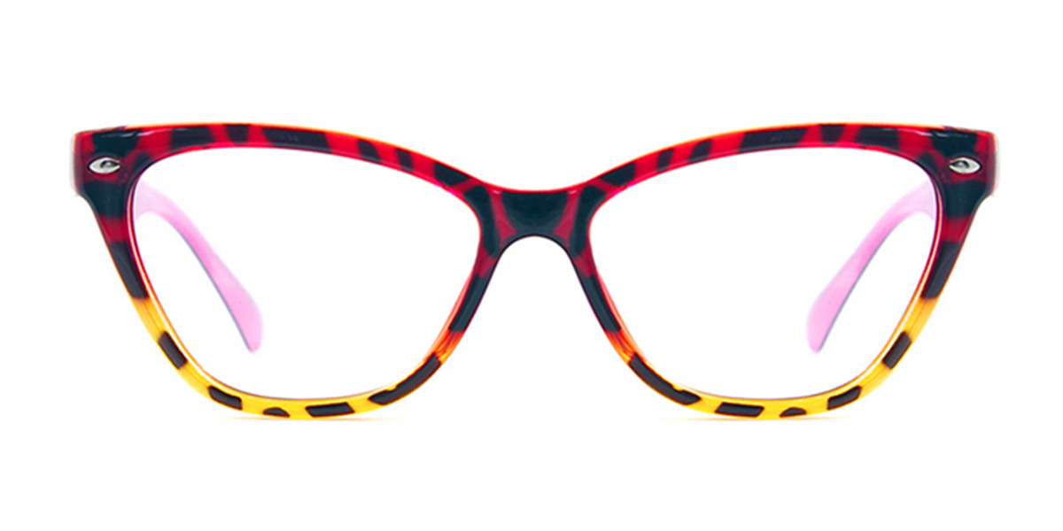 Cat Eye Tortoise eyeglasses